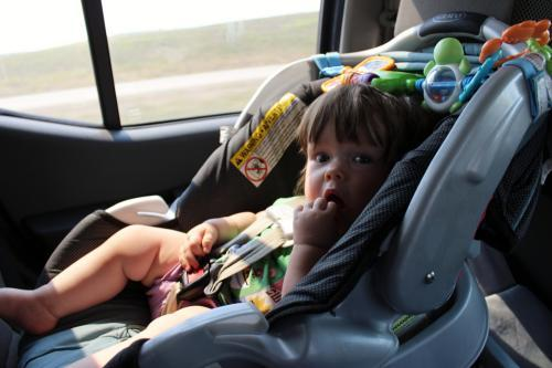 Child in a safety car seat